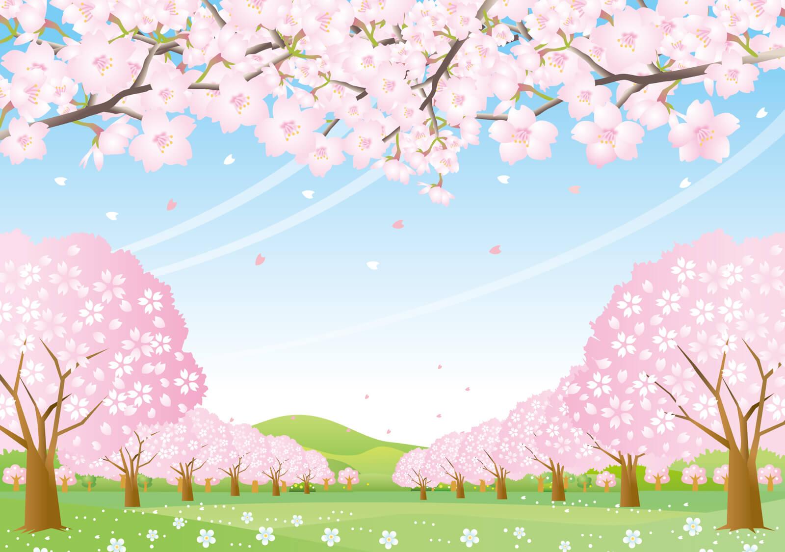 糸島で花見おすすめ3選