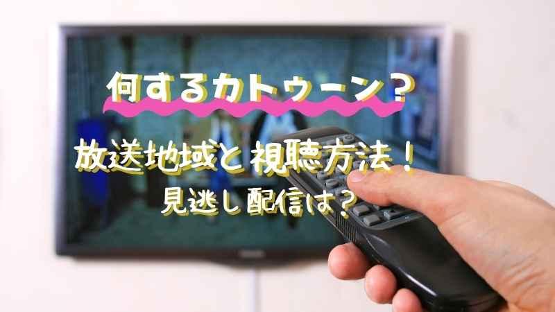 何するカトゥーン放送地域は?関西、東海、福岡の視聴方法と見逃し配信